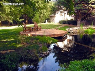 Photo gallery natural swimming pool ponds total habitat - Prix d une piscine naturelle ...